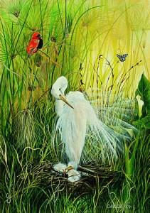 Charlotte-white_egret